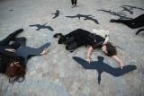 Nie strzelajcie do ptaków! - apelują miłośnicy przyrody, a Polacy ich popierają