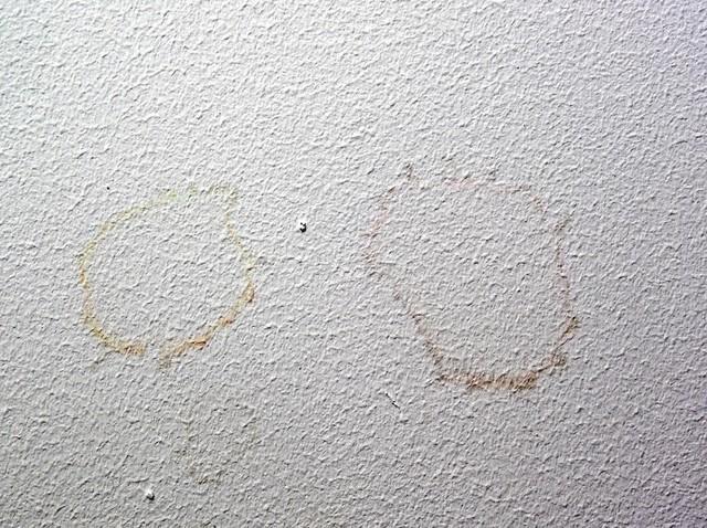 Plamy na ścianieTrudne plamy na ścianie - jak się ich pozbyć