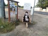 Konflikt w Pantalowicach przybiera na sile. Ktoś w nocy postawił kukłę radnej Jolanty Kubickiej