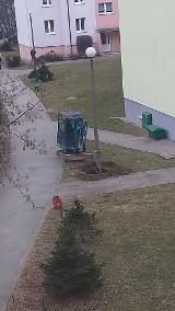 Chełmno. Nowe słupy oświetleniowe na osiedlu Kopernika