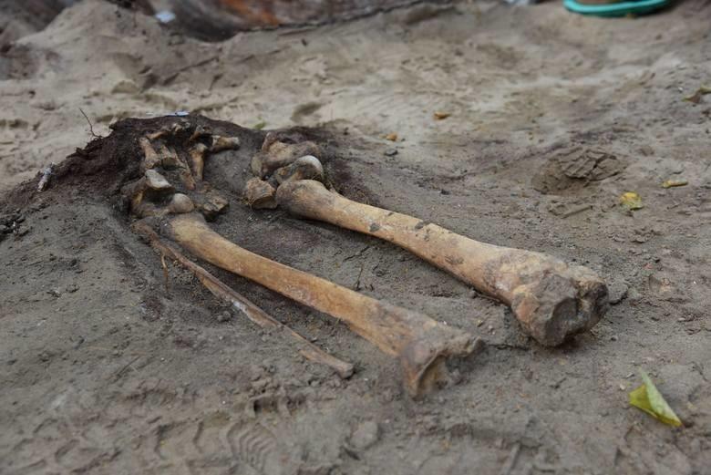 Prace archeologiczne w Nowym Porcie. Odnaleziono szkielety w...