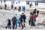 Gdynia: Sobota na plaży w Śródmieściu. 20.02.2020. Spacery i dokarmianie ptaków!