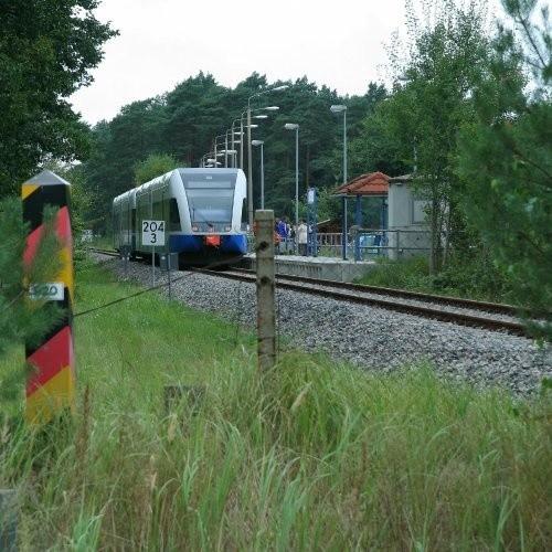 Linia kolejki będzie biegła przez las, za ścieżką rowerową. Przedłużenie torów z Niemiec do Świnoujścia trzeba będzie więc zacząć od wykarczowania drzew.