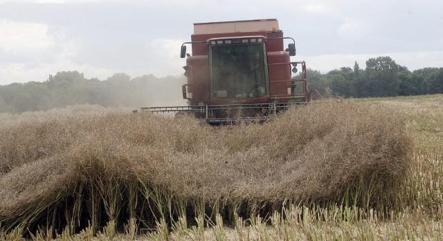 10 proc. wypadków w rolnictwie powstaje za sprawą maszyn