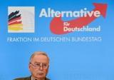 Niemcy: skrajnie prawicowa partia AfD będzie inwigilowana. Pierwszy taki przypadek od końca wojny