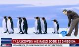 Atak zimy w Polsce to wina Trzaskowskiego MEMY. TVP Info robi durniów z Polaków