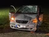 Wypadek: Grymiaczki. Groźne zderzenie mercedesa z łosiem na DK 8. Zwierzę nie przeżyło [ZDJĘCIA]