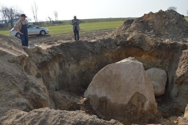Głaz gigant odkryty na polu rolnika w Domaniewie