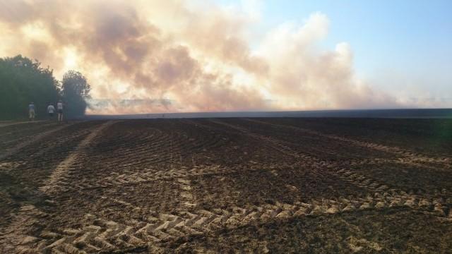Pożar zboża24 jednostki straży pożarnej gasiły pożar zboża w miejscowości Wysoka koło Boleszkowic. W wyniku pożaru spłonął kombajn.
