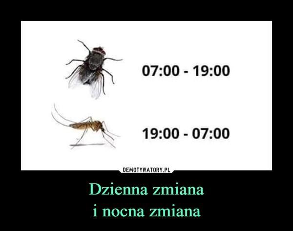 Memy o komarach