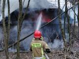Dwa pożary tego samego pustostanu w Konopnicy jednego dnia. Zobacz zdjęcia z akcji