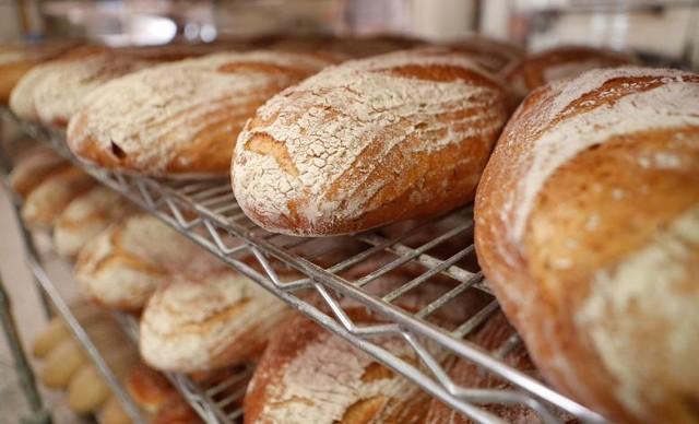 Podajemy minimalną krajową pensję, netto i brutto i ceny chleba w latach 2010 - 2020. Następnie piszemy, na ile bochenków chleba stać było mieszkańców Kujaw i Pomorza zarabiających minimalnie w poszczególnych latach. Jesteście ciekawi? Zapraszamy do następnych zdjęć.*Ceny chleba otrzymaliśmy z Urzędu Statystycznego w Bydgoszczy.