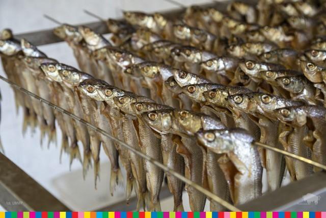 Ośrodek zarybieniowy w Gawrych Rudzie, który należy do Polskiego Związku Wędkarskiego Gospodarstwa Rybackiego PZW w Suwałkach jest w stanie zrealizować każde zamówienie amatorów ryb.