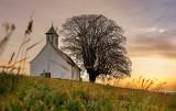 Zielone parafie. Katoliccy ekolodzy zachęcają parafie do działań ekologicznych. To odpowiedź na apel papieża Franciszka