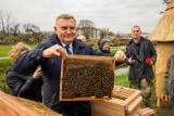Miejska pasieka już jest w Białymstoku. W każdym ulu mieszka prawie 35 tysięcy pszczół. Na wiosnę ma być miód