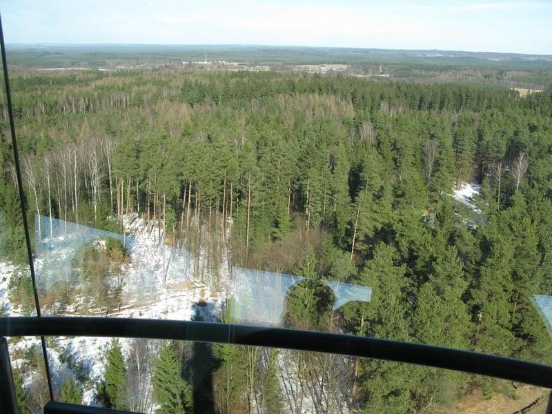 Wieża przeciwpożarowa Nadleśnictwa Dretyń niedaleko Trzcinna