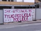 """""""Wojna o klon"""" na Starym Polesiu. Czy budowlańcy musieli wyciąć drzewo pod dojazd do nowego sklepu Lidl przy Żeromskiego?"""