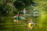 Sezon w Bałtowie rozpoczęty. Można już popływać kajakami po rzece Kamiennej i Wiśle [ZDJĘCIA]
