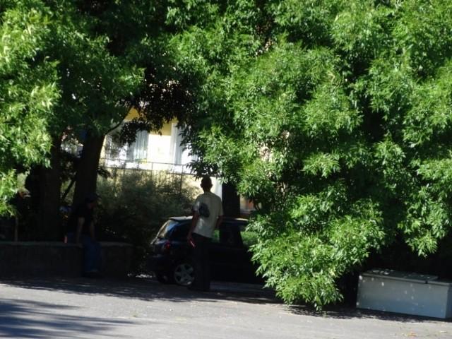 Mieszkańcy ulic Obozowej, Obronnej, Promienistej i Orężnej mają dość zakłócania spokoju na ich osiedlu.