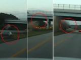 Okropny wypadek przy 160 km/h. Auto frunie w powietrzu (wideo)