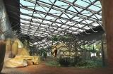 Kto zaprojektuje raj dla afrykańskich ptaków? Zoo w Gdańsku otwiera przetarg na przebudowę pawilonu