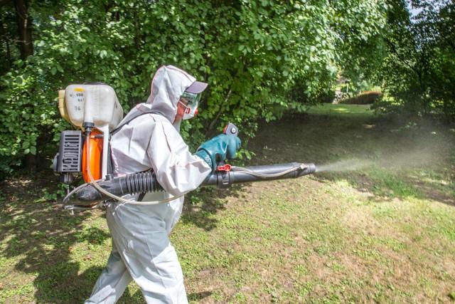 Katowice: ruszają opryski na kleszcze i komary. Gdzie będą opryskiwania?Opryski na kleszcze i komary w Katowicach