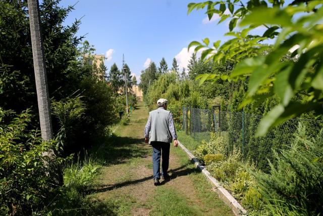 W Polsce funkcjonuje ponad 4,6 tys. ROD-ów. Okręg Poznański PZD skupia 291 ogrodów i ponad 52 tys. działek