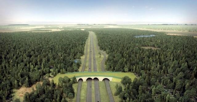 Jeden z trzech pierwszych odcinków, na które ogłoszono przetarg, Goleniów - Nowogard, będzie miał długość 19,2 km. Czytaj również: Donald Tusk w Szczecinie. Droga S6 będzie budowana
