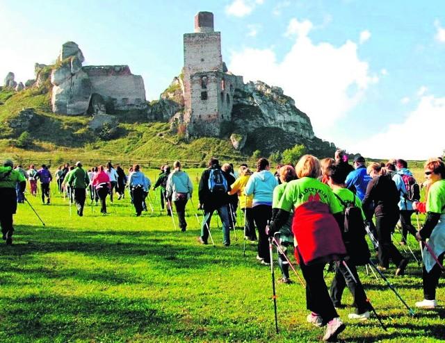 Nordic walking u stóp ruin zamku królewskiego w Olsztynie