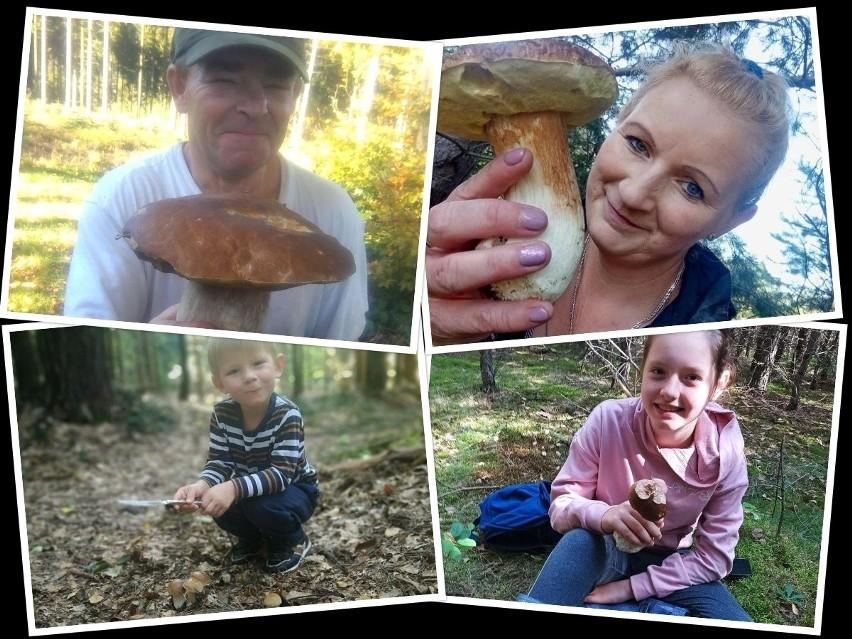 W świętokrzyskich lasach mamy mnóstwo grzybów p szczególnie...