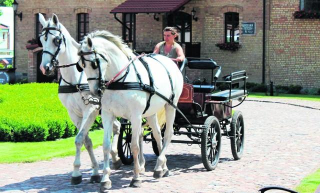 Przejażdżki konno oraz bryczką po pięknej okolicy to jedna z wielu atrakcji jakie czekają gości Folwarku Pszczew