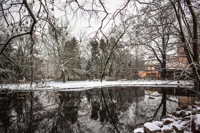 Pierwszy śnieg jeszcze w tym tygodniu? Długoterminowa prognoza pogody na zimę 2020/21