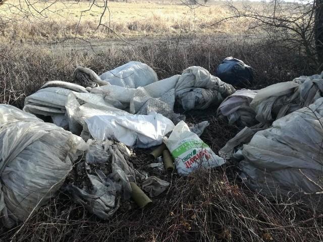Dzikie wysypisko śmieci nad Wisłą w Nowym Brzesku