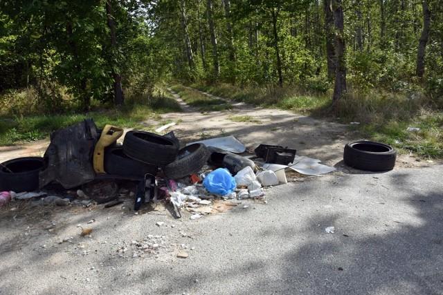 - Dotkliwym problemem dla budżetu państwa oraz samorządów jest ponoszenie kosztów zagospodarowania porzuconych odpadów- mówił minister Kurtyka.