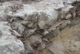 Artefakty małego Sępólna na Krajnie. Pierwsze, a cenne [zdjęcia]