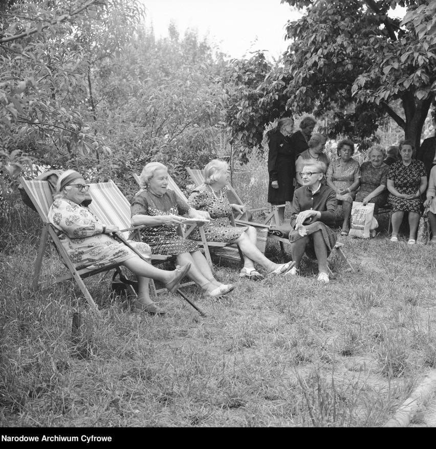 Wczasy w ogrodach działkowych   Fot. 1977 rok.