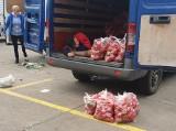 Ceny warzyw i owoców na Zjazdowej. Jest o połowę taniej w porównaniu z marketami i targowiskami