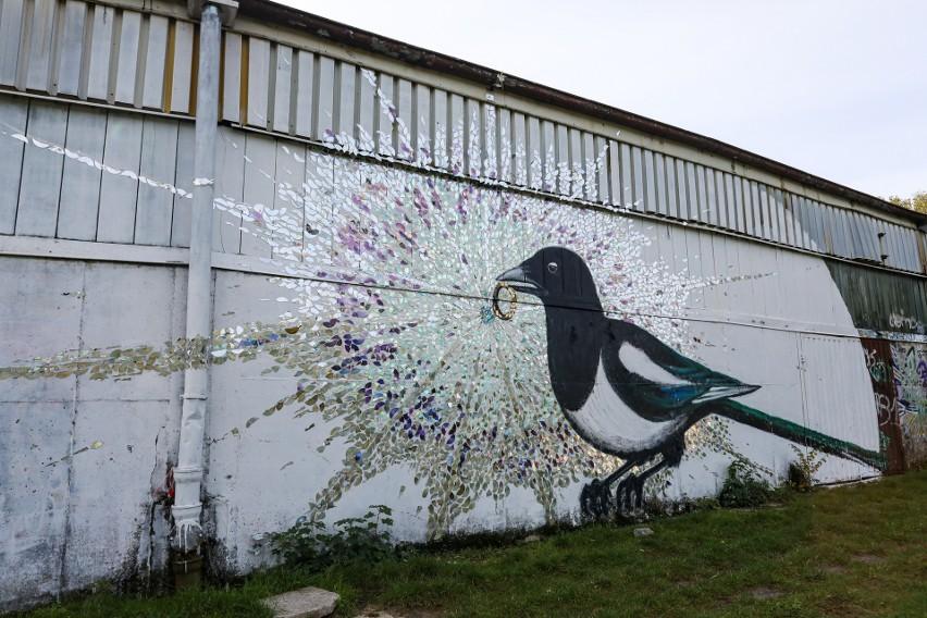 """Tor kolarski w Szczecinie """"pod sroką"""". Kim jest tajemniczy autor muralu?"""