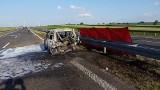 Potworny wypadek na drodze S3 w Zachodniopomorskiem. Mężczyzna spłonął w samochodzie [ZDJĘCIA]