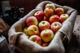 Spożycie warzyw i owoców w Polsce. Ekspert: Sytuacja nie wygląda dobrze