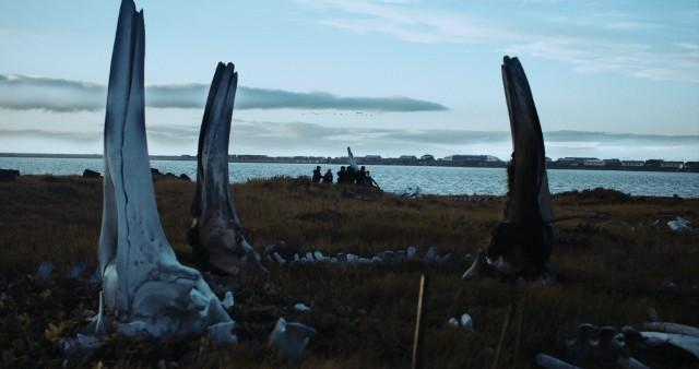 """Wieloryb z Lorino"""