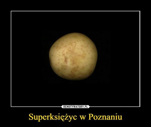 Poznań na demotywatorach. Bawi Was to?
