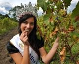 Wybory Miss Polski 2021 już w niedzielę. Trzy kandydatki z lubuskiego startują w konkursie