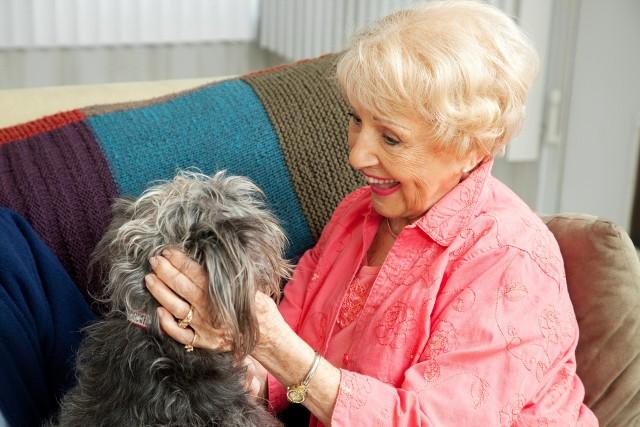 W dogoterapii nawiększą rolę odgrywa więź jaka łączy zwierzę i człowieka. Ten rodzaj terapii zalecany jest przede wszystkim osobom we wczesnym stadium choroby Alzheimera.