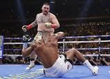 Anthony Joshua stracił pasy mistrza świata! Sensacyjna wygrana Andy'ego Ruiza Jra [WIDEO]