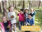 Jak zrobić kupę w lesie - uczą Lasy Państwowe. Instruktażowy wpis leśników na Facebooku to hit internetu. Wszystko z myślą o ekologii