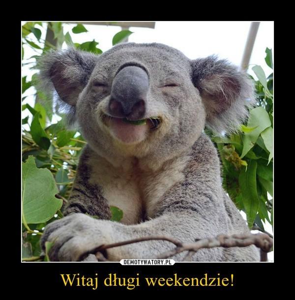 Długi weekend, czyli co śmieszy internautów