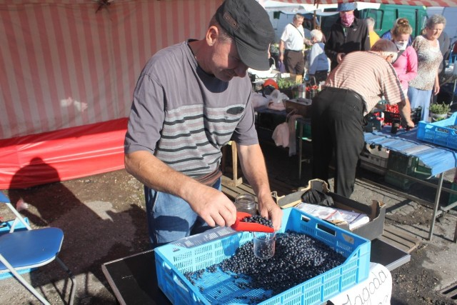 Na inowrocławskim Targowisku Miejskim można już kupować jagody