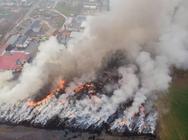 Strażacy ponownie gasili pożar na składowisku w Raciniewie, w gminie Unisław. To dokładnie to samo miejsce, w którym wybuchł ogromny pożar 13 listopada.
