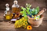 Przeciwwirusowe rośliny – te zioła mogą wspomóc walkę z COVID-19! Niektóre z nich spożywamy na co dzień!